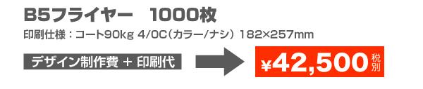 B5フライヤー1000枚